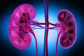 What is Diabetic Nephropathy, Its Stages, Symptoms and Treatment